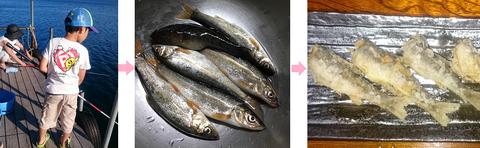 魚釣り.pngのサムネール画像